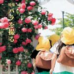 850種のバラ。楽しみ方は人それぞれ(広報なかの 平成29年7月号)