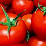 リコピンさんありがとう☆広報紙で見つけたトマトレシピ5選